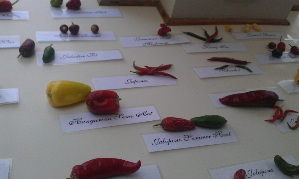 West Dean Chilli Fiesta 2011