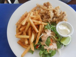 Deep fried calamari, fries and salad